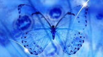 Blue Butterfly Wallpaper HD