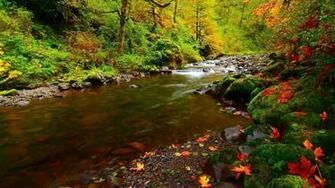 River Rocks Autumn Natural Desktop HD Wallpapers   Large