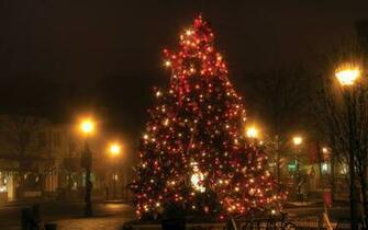 Christmas Tree Lights Wallpaper 1920x1200   Fondo hd 1606
