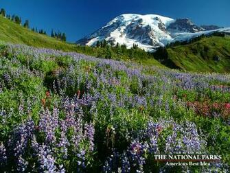 The National Parks Americas Best Idea Download Wallpapers PBS