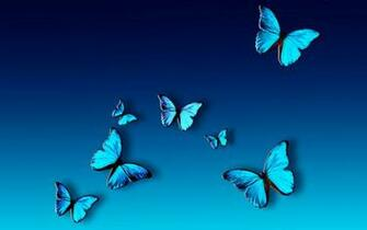 Blue Butterfly Hd Wallpaper Full HD Wallpapers   Clip Art