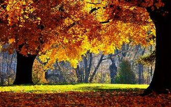 Autumn Farm Desktop Wallpaper   Viewing Gallery