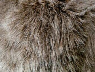 Shag Faux Fur 1 by Rhabwar Troll stock