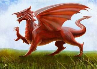 Download Welsh Flag The Red Dragon by AndyFairhurst [1024x736