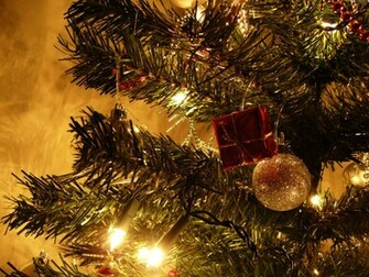 Christmas Tree Wallpapers   Download Christmas Tree Wallpapers   Pc