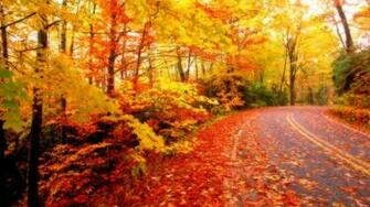 Beautiful Autumn Season Wallpapers HD 1600x1000