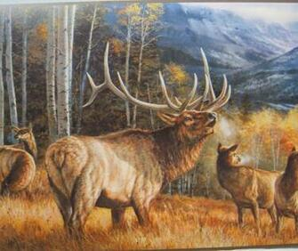 Elk in The Rockies Hunting Wildlife Wallpaper Border 9