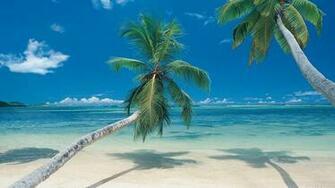 Tropical Paradise Wallpapers Hawaii Maldives Tahiti Islands Beach