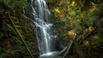 Berry Creek Falls Big Basin Redwoods State Park California United