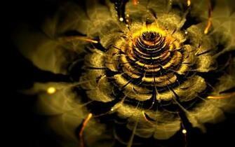 GOLDEN FLOWER wallpaper   ForWallpapercom