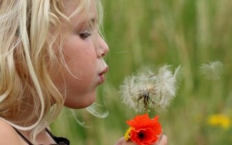 Girl blowing on a dandelion flower wallpapers and images   wallpapers