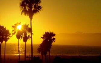 49] Venice Beach California Wallpaper on WallpaperSafari