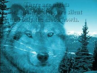 Gray Wolf Mountain Scene Wolf Wallpapers Backgrounds Screensaver