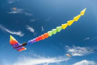 Kites flying in the sky HD Wallpaper Background Image