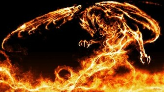 Fire and Ice Dragon Wallpapers   HD Wallpapers