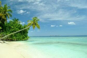 of pictures of tropical paradise beaches High Resolution Wallpaper