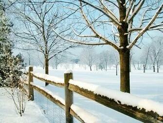 Winter Scene 1600x1200 Wallpapers 1600x1200 Wallpapers