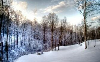 19201200 Widescreen Winter Snow Scenes   Dreamy Winter Snow Wallpaper