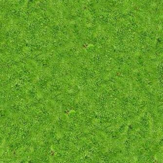 Green grass field Vegetation Lawn Grassland Green Carpet