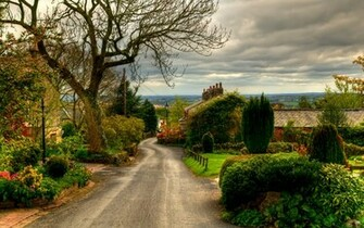 UK Road England Horwich Trees Shrubs nature landscapes town village