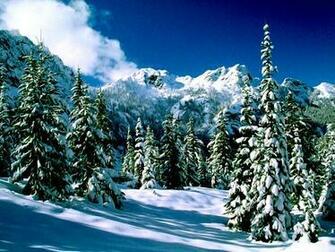 Winter Nature Snow Scene Desktop Wallpapers for