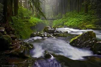 wallpaper Sol Duc Falls Olympic National Park Washington State