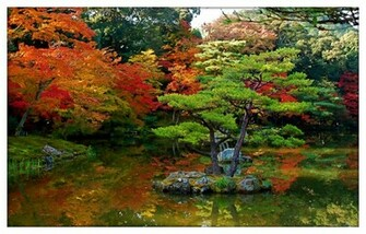 desktop wallpapers topic japan garden wallpapers garden ireland