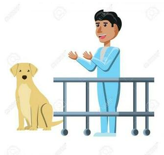 Vet Doctor And Labrador Over White Background Vector Illustration