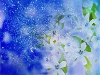 flower wallpaper flower wallpaper for desktop 3d flower wallpaper