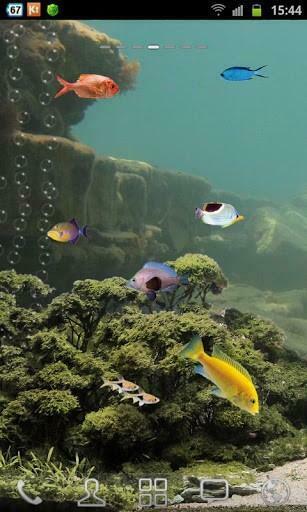 Screen aquarium is Aquarium Saver Aquarium