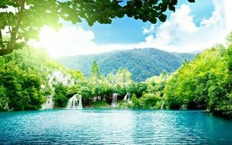 most beautiful landscape of the wood HD Desktop Wallpaper HD Desktop