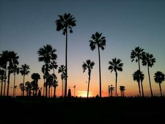 60 Venice Beach Sunset Wallpapers   Download at WallpaperBro