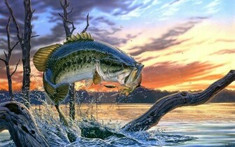 largemouth bass fishing wallpaper screensaver   flipped Images
