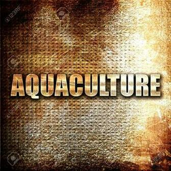 Aquaculture 3D Rendering Metal Text On Rust Background Stock