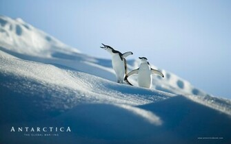 Antarctica wallpaper 89301