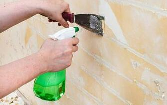 How to Remove Wallpaper   The Home Depot