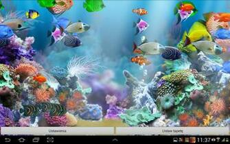 Aquarium Fish Game Wallpaper I Like Game Wallpapers