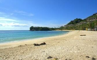 Tropical Beach Scenes   Download Wallpaper