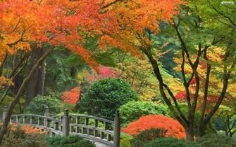 Japanese Garden Wallpaper   wallpaperwallpapersfree wallpaper