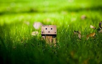 1280x800 Cute Green grass box people backgrounds wide