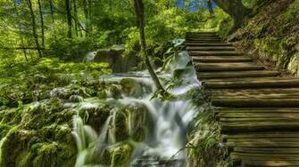 Photo Croatia Plitvice Lakes National Park Nature Bridges 2560x1440