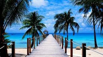 Tropical Beach Paradise Wallpaper High Quality