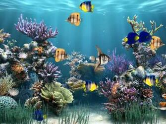 Aquarium Animated Wallpaper   Download
