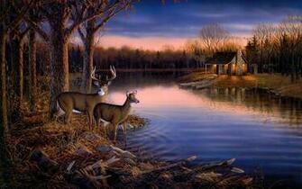 Deer Lake Evening Wall Mural 1920x1200 538 HD Wallpaper Res