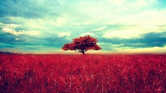 Tumblr Nature Backgrounds Download HD Wallpapers
