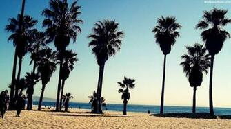 Venice Beach California Wallpaper 67 images