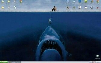 Funny Wallpapers for My Desktop   wwwwallpapers in hdcom