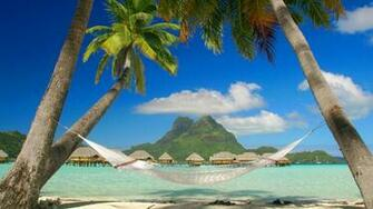 Tropical Beach Resort and palm hammocks Wallpapers Beach Pictures and