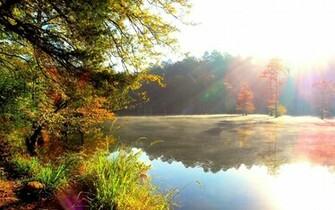 Natural Beauty HD Wallpaper My image
