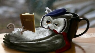 New Art Funny Wallpapers Jokes Funny Fantasy Reading Owl Wallpapers